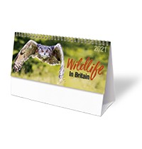 Wildlife in Britain Desk Calendar